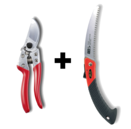 ARS Secateur and Folding Saw Combo